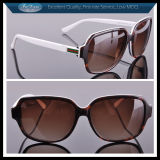Pretty Sunglasses Top Custom Eyewear Frames