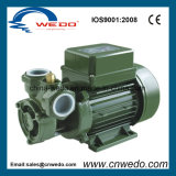 Electric Clean Water Pump (KF-1) for Garden Use