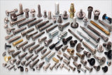 We Are Specialized in Tapping Screws, Machine Screws, Self-Drilling Screws, Construction Screws and Furniture Screws. Custom-Made Screws Are Also Available.