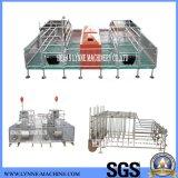 Poultry Farming Galvanized Fatten Gestation Pig Cage Best Price
