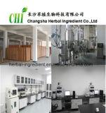 Lion's Mane Mushroom Extract 30%-Changsha Herbal Ingredient