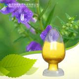 Suutellaria Baicalensis Georgi Extract Scutellaria Lateriflora 92% Baicalin