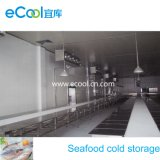 Large Size Cold Storage for Frozen Seafood and Seafood Processing Plant