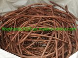 Grade AA Copper Quality of Copper Wire Scrap 99.99% Mill-Berry