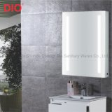 European Style Modern Aluminum Bathroom Mirror Cabinet with LED Light