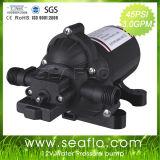 Seaflo 24V 45psi Electric Power Sprayer Pump