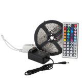 Promotion Price 5050 60LEDs/M LED Strip 12V / 24V LED Lights with 5m/Reel LED Strip Light 3 Years Warranty