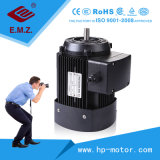 Mc Series AC Single Phase and Three-Phase Induction Vertical and Horizontal Electric Motor