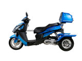 3 Wheels Electric Motorcycles/Tricycle/Trike/Scooter