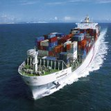 LCL/FCL From China to Togo Africa Top 10 Sea Freight Forwarder