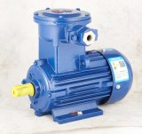 Ybx3-Series High Efficiency Explosion-Proof Three Phase Induction Electric Motor