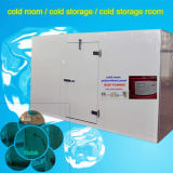 Cold Room / Cold Storage with Energy-Efficient Compressor