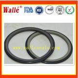 China Manufacture Turcon Roto Glyd Ring