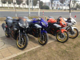 Racing Motorbike China Hot 150cc 250cc Gas Motorbike for Sale