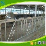 Farm Equipment Hot DIP Galvanized Cattle Head Lock for Cow
