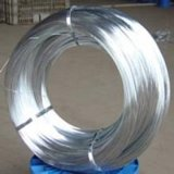 G. I Wire, Galvanized Steel Wire/Cut Wire, Galvanized Iron Wire
