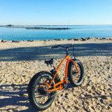 High Speed Fat Tire 2018 New Electric Bike Cheap Man Beach Cruiser Ebicycle