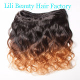 Lili Beauty Ombre Brazilian Body Wave Human Hair Bundles