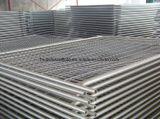 Australian/New Zealand Galvanized Welded Wire Mesh Temporary Fence Panels