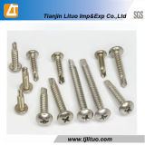 Stainless Steel Pan Head Self Drilling/Tapping Screw