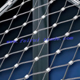 Ss304 / Ss316 Wire Rope Mesh with Ferrule Type