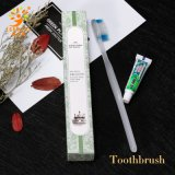 Hotel Disposable Toiletries Toothbrush and Toothpaste