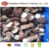 Top Quality Whole Boletus Mushroom with Good Price
