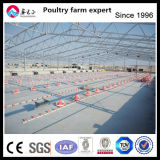 All Types of Heaters Prices Automatic Equipments Broiler Chicken Cage Poultry Farm House Design for Sale