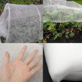 50X25 Mesh 100G/M2 Anti Insect Netting