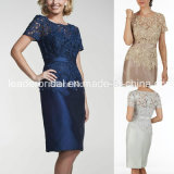 Short Sleeves Lace Formal Gowns Black Sheath Evening Ladies Dresses Z5006