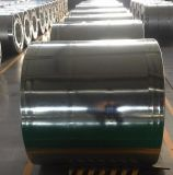 1.1mm*1000mm Galvanized Steel Coil Manufacturer