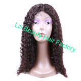 Lili Beauty Human Hair Kinky Curly Wigs Natural Dark Color 10-24inch Pre Plucked Full Lace Human Hair Wigs