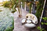 Outdoor Lounge Set/ Daybed /Garden Furniture Patio Sun Lounger (BP-602)