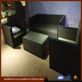 Garden Rattan Wicker Patio Office Double Furniture with Table