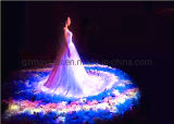 Naked-Eye 3D Holographic Projection Technology Display for Stage / Exhibition Hall