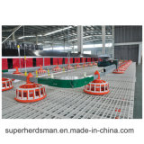 Poultry Machinery Equipment Agricultural for Breeder Chain Feeders