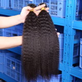 Keratin Stick Tip Remy Fusion Hair Extension Double Drawn I Tip Human Hair Extensions 1g Strand Kinky Straight Virgin Hair