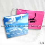 Custom Printed Plastic Shopping Carrier Bag, Gift Handle Bag, Cosmetic/Make up Drawstring Pouch