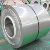 201 2b Finished PVC Coated SGS Stainless Steel Coil