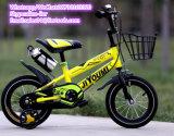 Wholesale Kids Bike / Children Bike/ Kid Bike