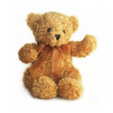 Loving Soft Stuffed Animal Cuddly Plush Teddy Bear Toys