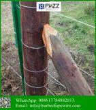 Animal Husbandry-Specific Galvanized Steel Oval Wire