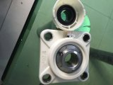 Factory Hot Sale Plastic Bearing Housing Stainless Steel Bearing