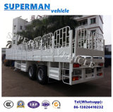 Utility Two Axle Store House Side Wall Cargo Van Semi Truck Trailer