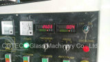 Ce Vertical Glass Straight Line Edging Machine with 9 Motors (CGZ9325D)