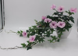 Artificial Plant Morning Glory Flower for Hotel Decoration