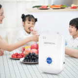 Hot Selling Portable Household Ozone Generator Food Sterilizer Water Air Purifier Ozonizer Mini Household Ozone Machine