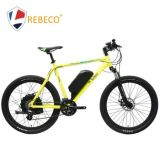 High Quality 26 * 2.125 750W Lithium Electric Mountain Bike