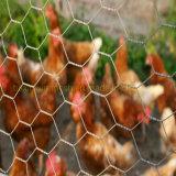 Fence Hardware Poultry Equipment Plastic Hexagonal Mesh Fence Net Chicken Netting