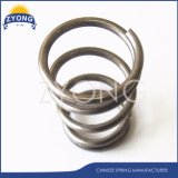 Stainless Steel Compression Spring for Auto